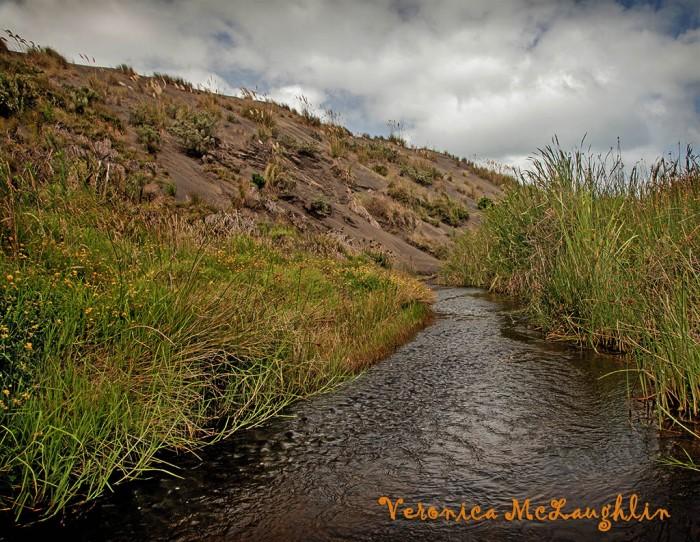 Wainamu-creek