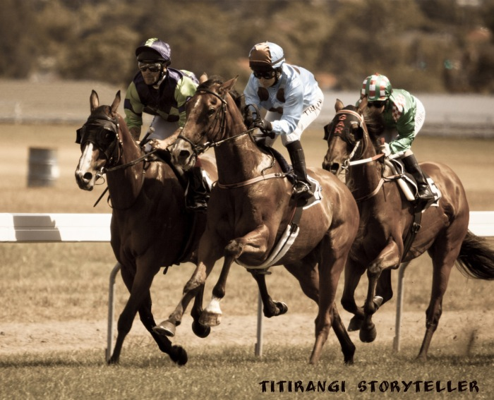 Horses-234