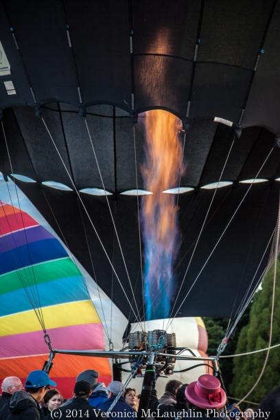 Balloons-12