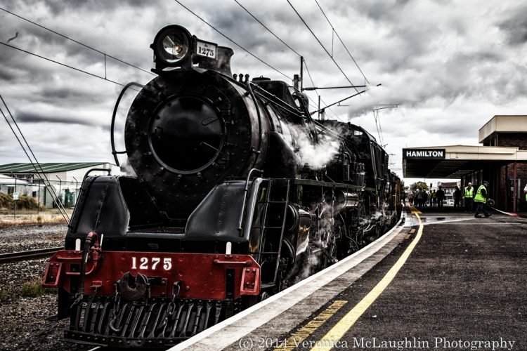 Ham-Train-5