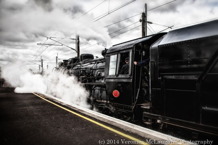 Ham-Train-6 copy